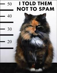 no spam3
